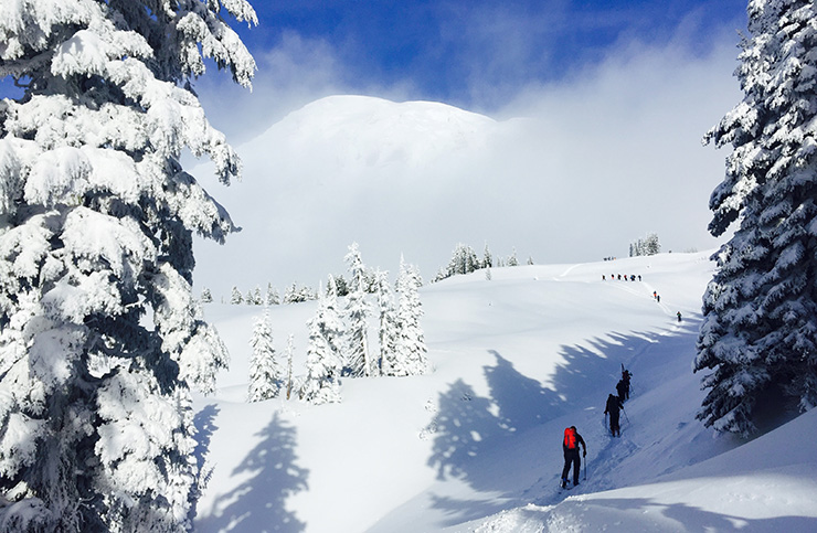 Backcountry skiing Mt. Rainier