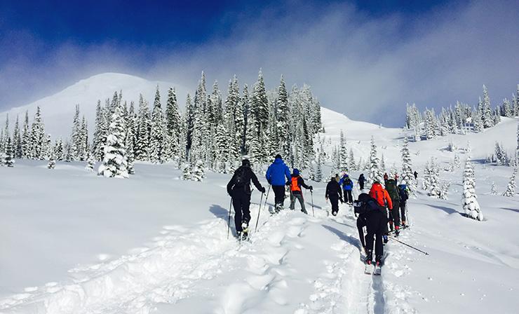 Mt. Rainier Backcountry Skiing
