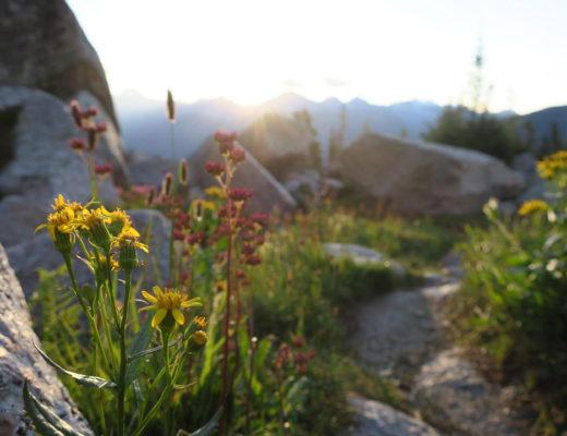 Sunrise Bugaboo Provincial Park