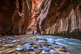 A tight corridor of the Narrows in Zion National Park